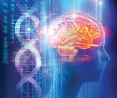 Reversing Brain