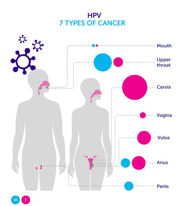 hpv virus cancer std