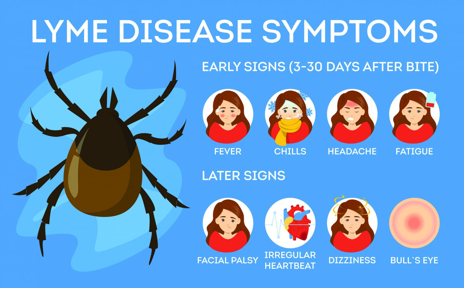 Lyme Disease: Canadian Medical Association Warns Of New ...